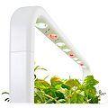 Click and Grow Smart Garden 9 bílý