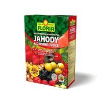 FLORIA pro jahody a ovoce 2,5 kg